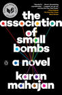 Karan Mahajan, The Association of Small Bombs